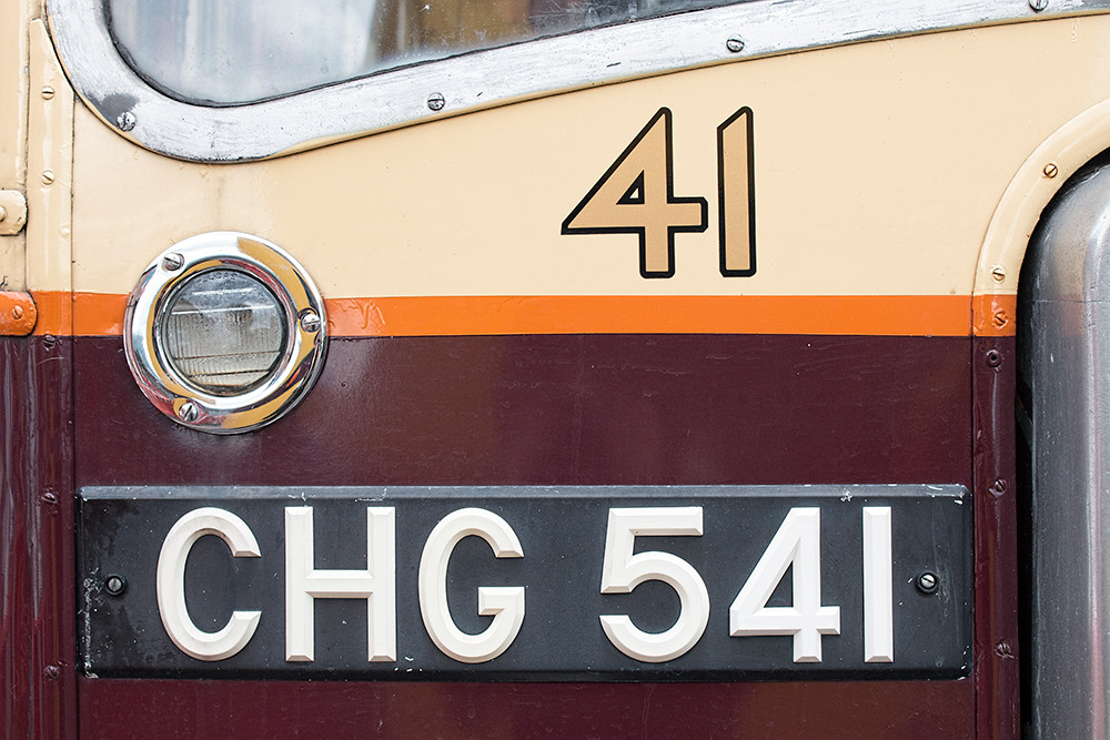 Bus Number 41
