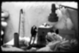 ムートン専門店 ライフスタイル アライヴ -MOUTON LIFE STYLE ALIVE-