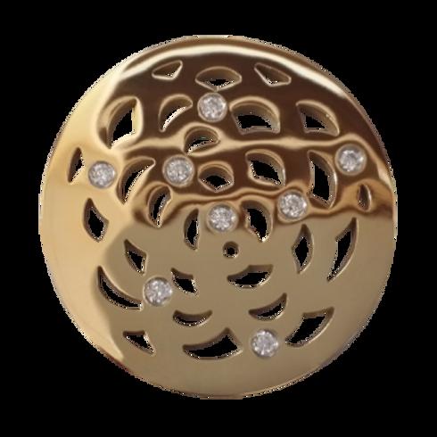 Spiraling Rose