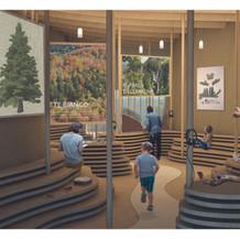 il museo dell'abetina