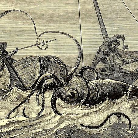 Un calamar géant a t-il coulé un bateau ?