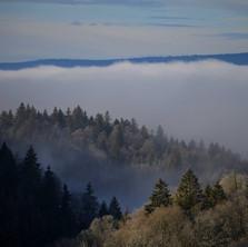 Sortir du brouillard.
