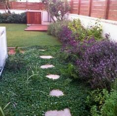 פרויקט תכנון והקמת גינת גן רמלה