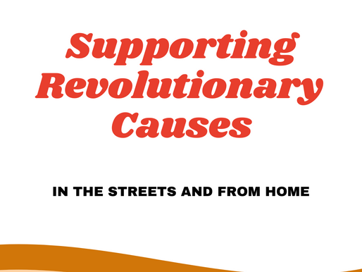Supporting Revolutionary Causes: In the Streets and from Home.