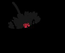 daydreams-hco-logo-final.png