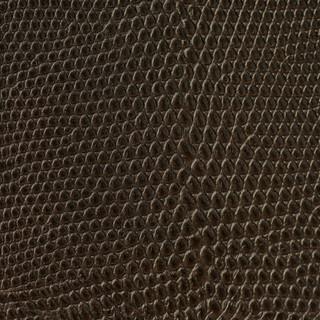 Lizard Cocoa Bronze