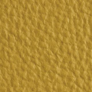 PG-817 Chartreuse Yellow.JPG