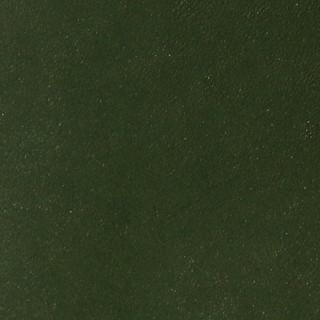 Juniper Green.jpg