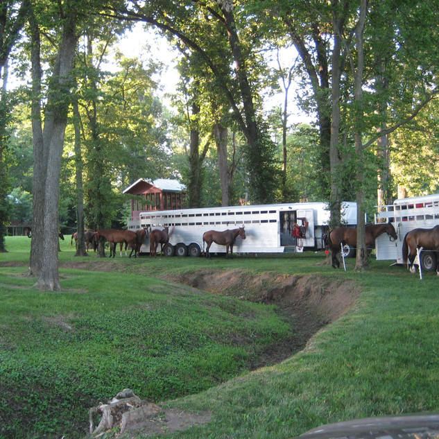 Faraway Farm, Polo