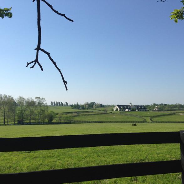 Three Chimneys at Bluegrass Heights
