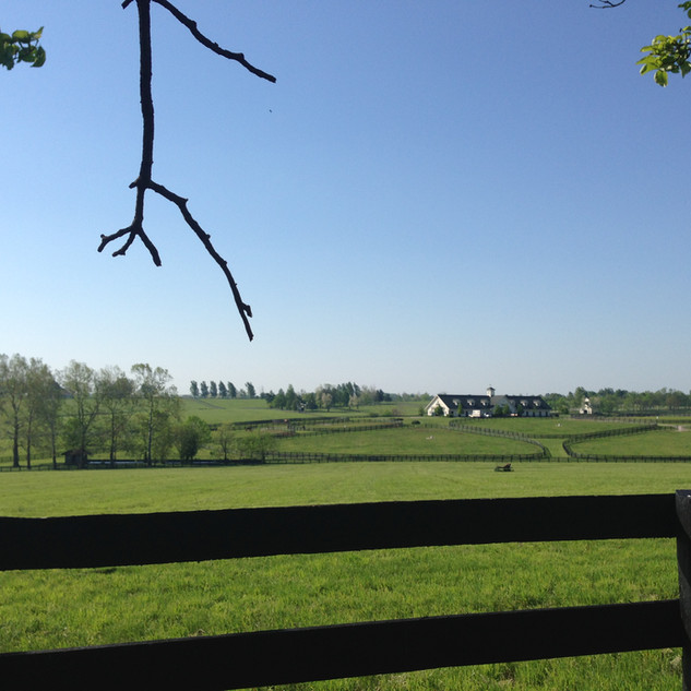 Three Chimneys, Bluegrass Heights