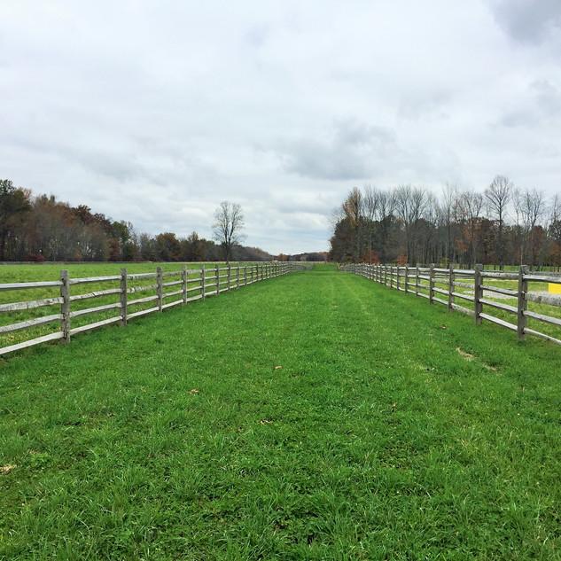 Morgan Farm