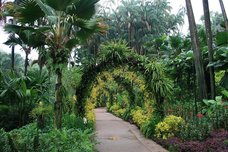 Singapore Botanic Gardens | Luxury Travel Guide | Wandering Diva