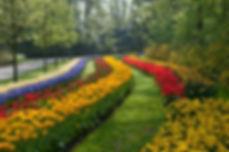 Keukenhof Gardens | Luxury Travel Guide | Wandering Diva