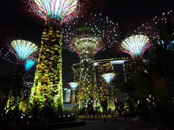 SEE & DO: GARDENS BY THE BAY