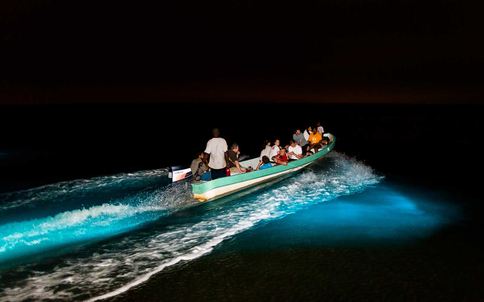 SEE & DO: BIOLUMINESCENT WATERS