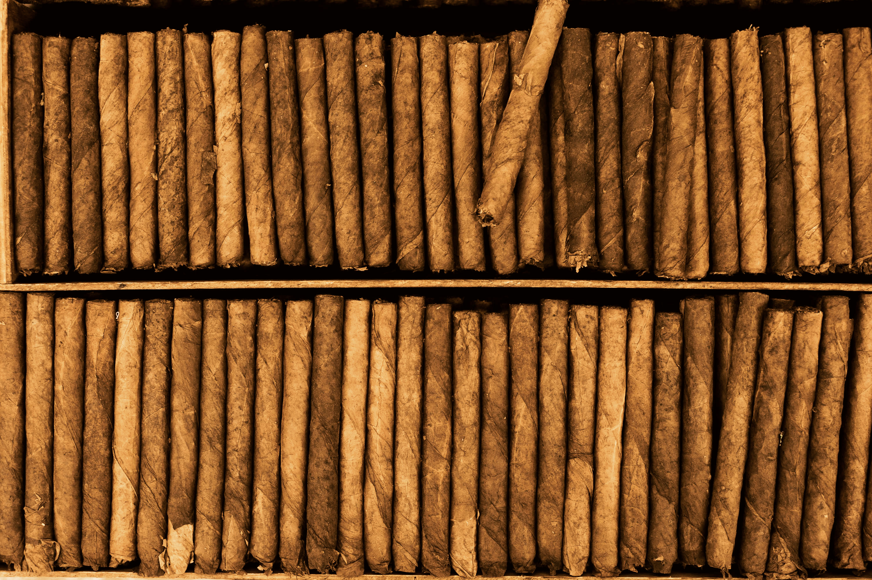 SHOP: CIGARS