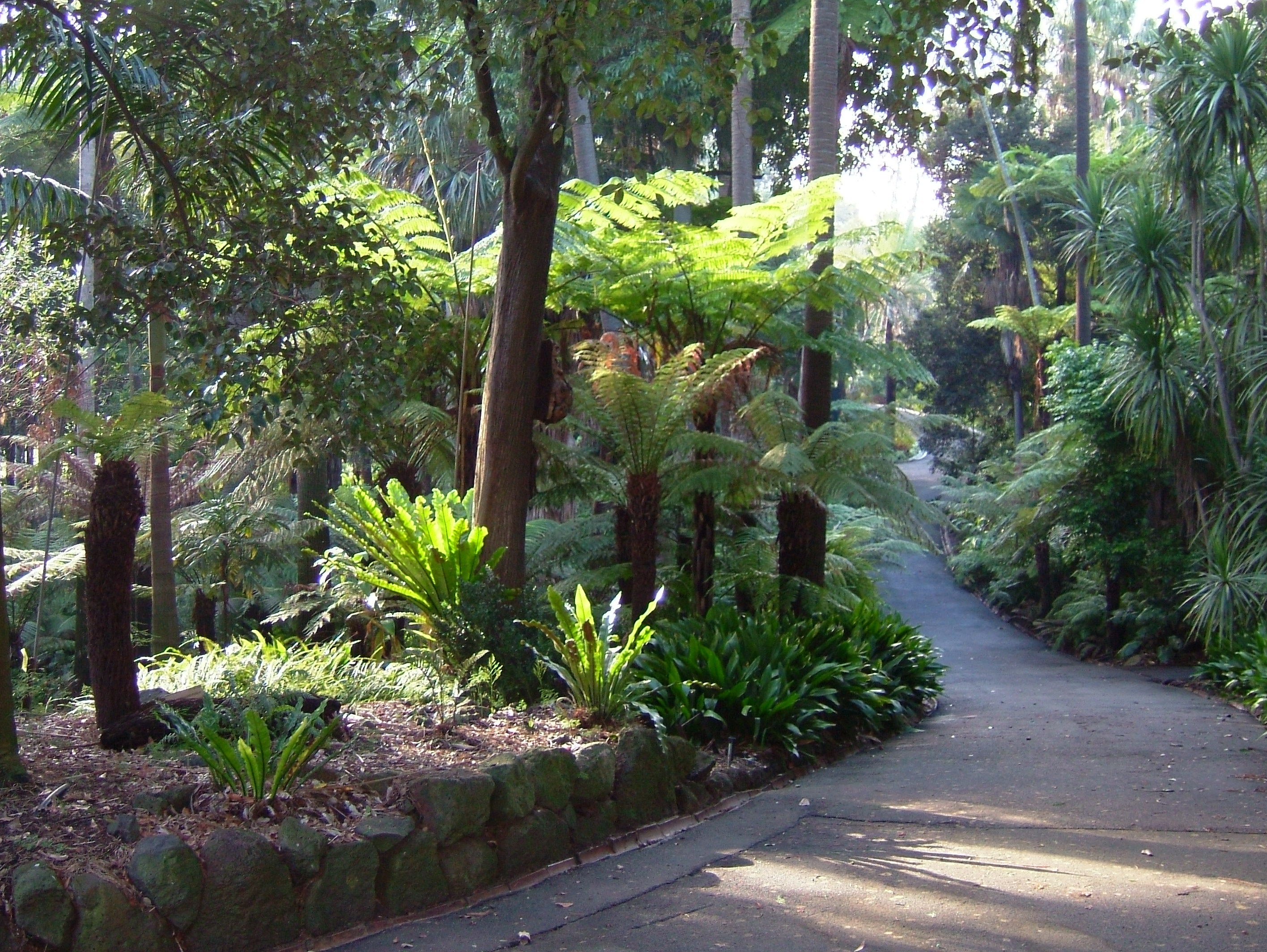 SEE & DO: ROYAL BOTANIC GARDENS
