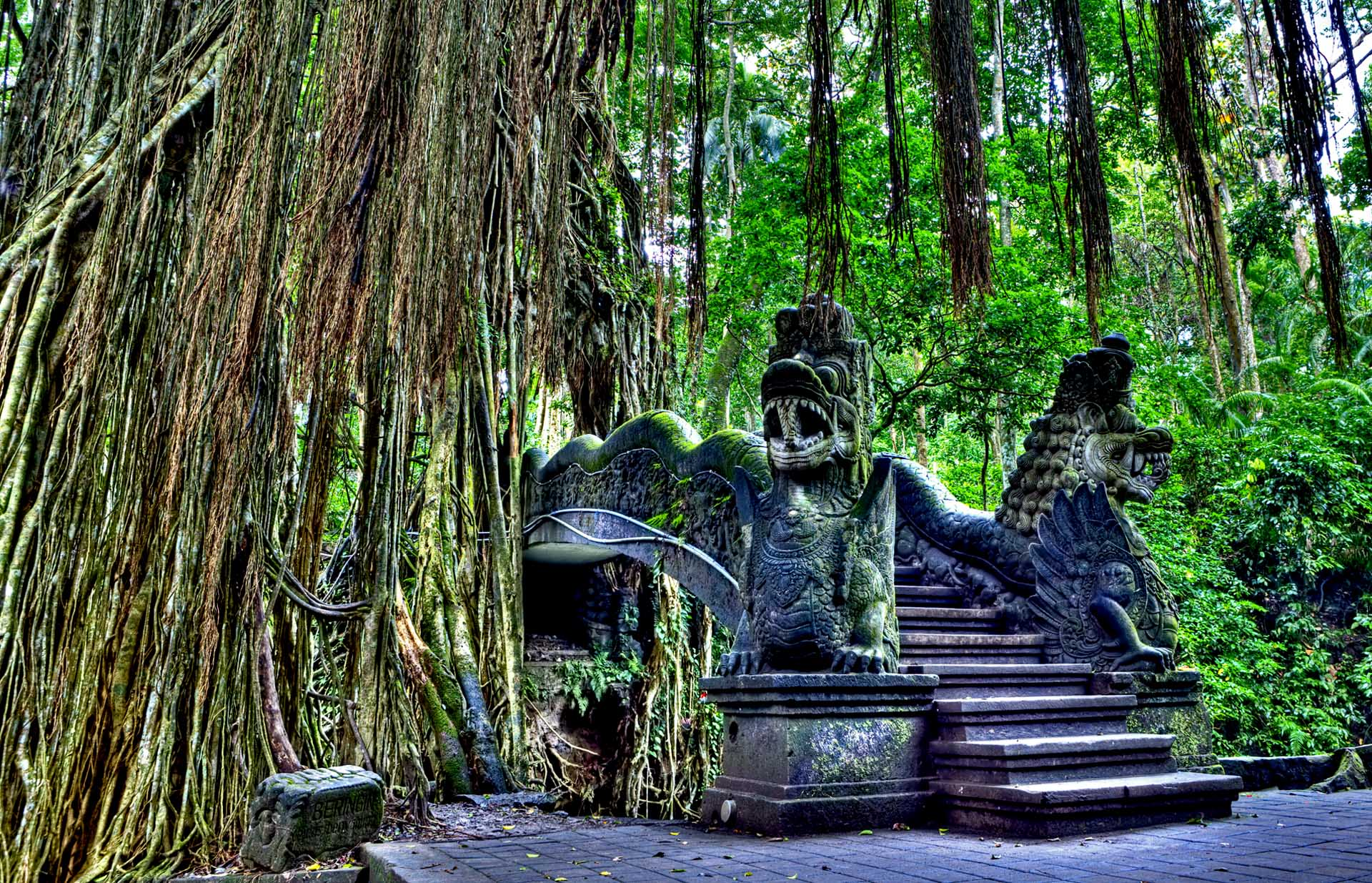 SEE & DO: UBUD MONKEY FOREST