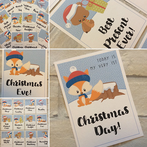 Baby's 1st Christmas Milestone Cards (Woodland Animals)