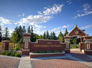 University of Idaho.png