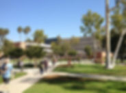 California State University-Long Beach.j