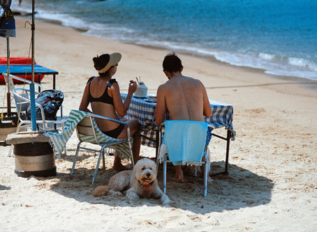 Lamma Island (Film) - Minolta Maxxum 7 / Kodak Portra 400