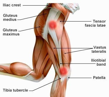 Runner's hip: the most typical injuries in runners