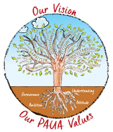 Paua Values.png