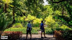 Zabytkowy ogród botaniczny