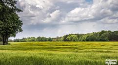 Dobra - okoliczne pola