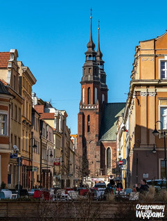 Opole - Katedra