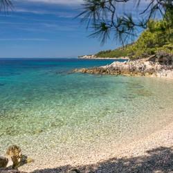 Plaża Žutica