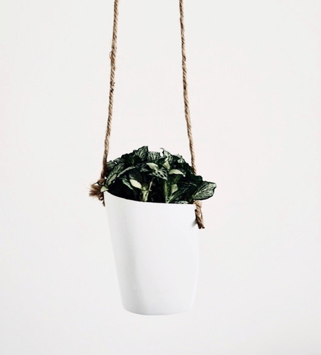 LATHER, RINSE AND REUSE HANGING PLANTER