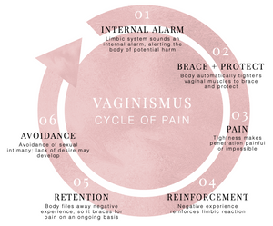 The Vaginismus Cycle of Pain