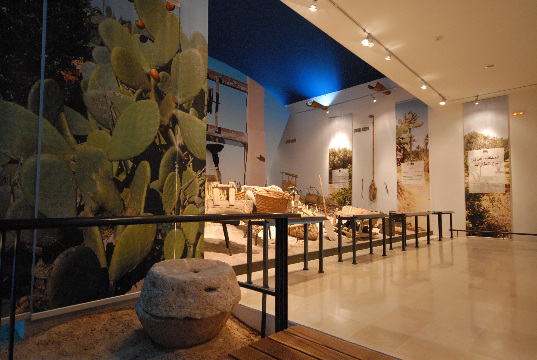 TUNIS - MUSÉE DES ARTS PREMIERS