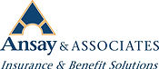 Ansay & Associate.jpg
