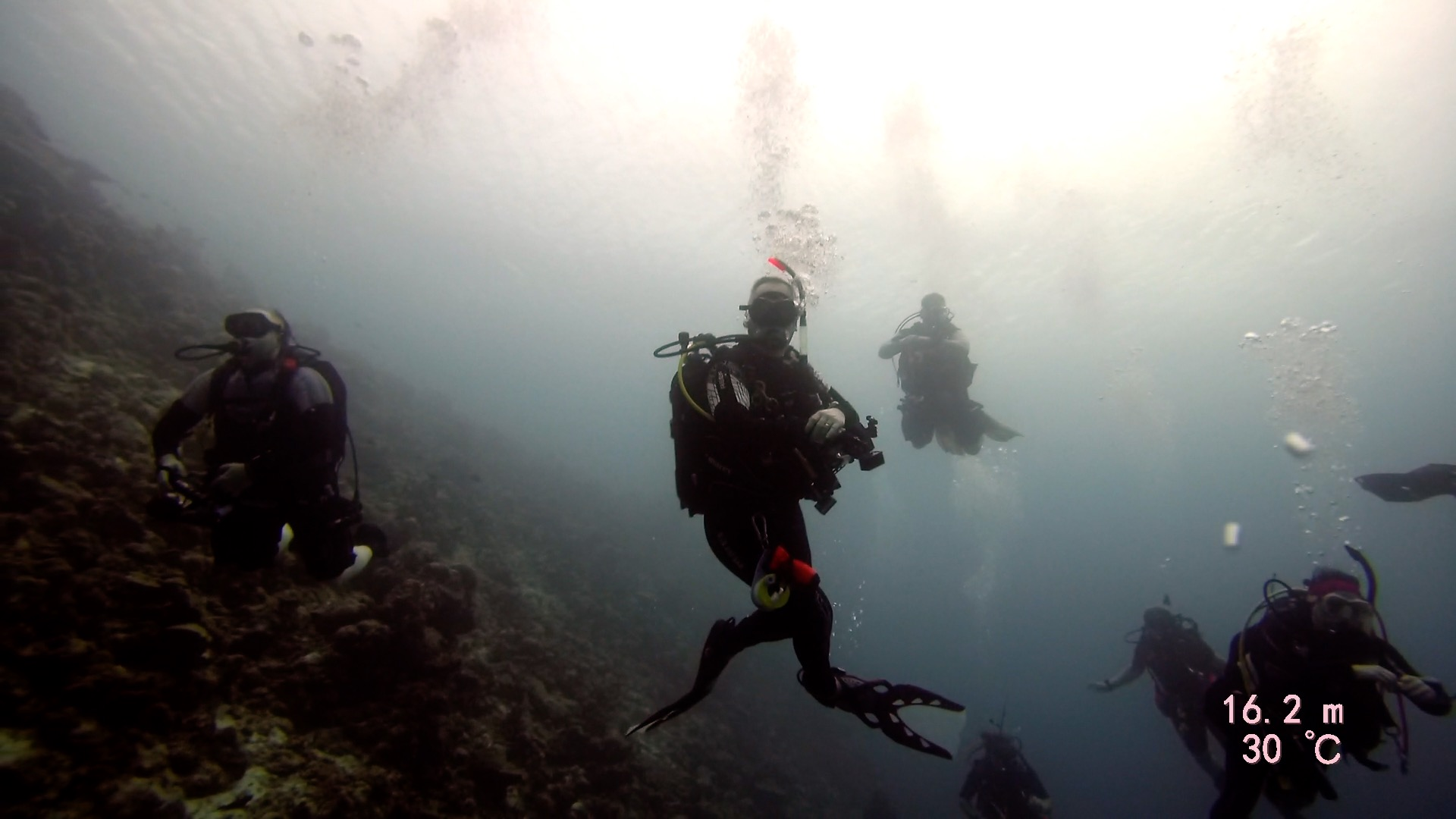DiveMania Divers