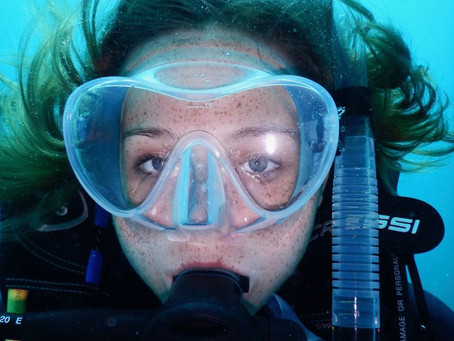 Why I Dive... Why don't you?