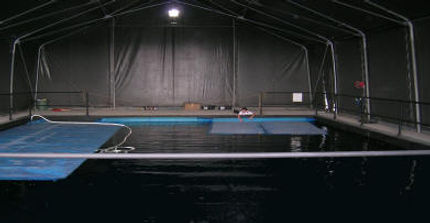 DiveMania at Underwater Studios