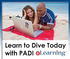 Learn to dive Grays, Learn to dive Hornchurch, Learn to dive Upminster, Learn to dive Romford, Learn to dive Dagenham, Learn to dive Barking, Learn to dive Rainham, Learn to dive Brentwood, Learn to dive Ilford, PADI Essex, Learn to dive Essex, Scuba Essex
