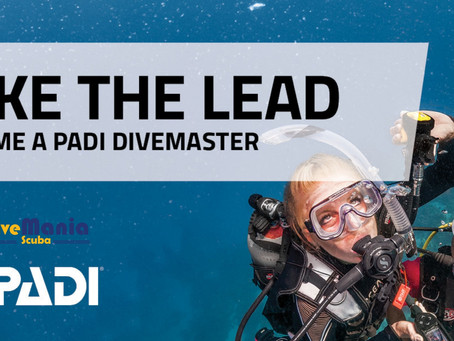 Divemaster - Have you got what it takes?