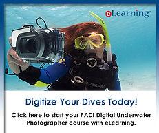 Learn to dive Grays, Learn to dive Rainham, Learn to dive Romford, Learn to dive Upminster, Learn to dive Brentwood, Lern to dive Bulphan, Learn to dive Dagenham, Learn to dive Essex, Learn to dive M25, PADI Orsett,