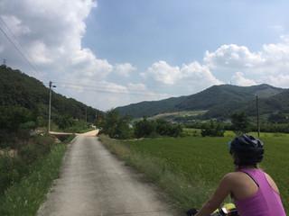 South Korea Cross Country: Day 4 (55km)