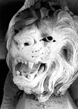 Flying Buttress Lion