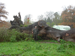 The 30 Ton Oak Trunk