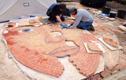 Installing the mosaic