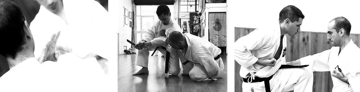 KaratePalma2_edited.jpg
