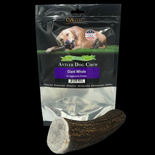Giant Whole Elk Antler Dog Chews