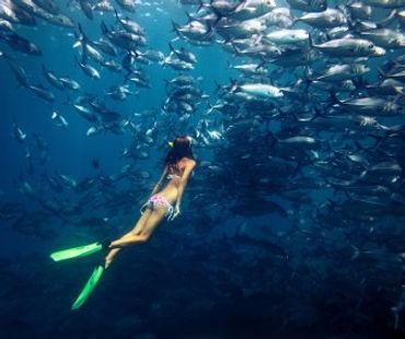 PADI Girl Freediver.jpg